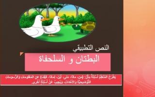 حل درس قصة البطتان والسلحفاة عربي صف ثاني