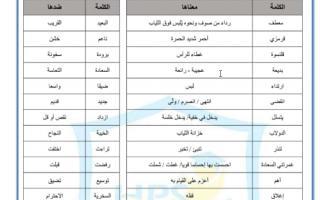 ورقة عمل درس معطفي القرمزي لغة عربية صف رابع فصل ثاني