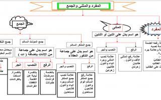 حل درس إعراب المثنى وجمع المذكر السالم لغة عربية الصف السادس